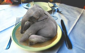 eat_the_elephant -cute
